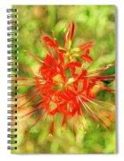 Spider Lily Pop Spiral Notebook