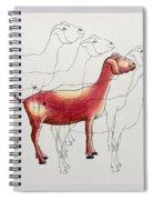 Split Personality  Spiral Notebook