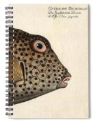 Spotted Trunk Fish  Spiral Notebook