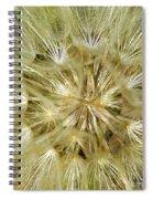 Dandelion Bloom Spiral Notebook