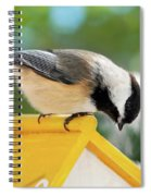 Spring Chickadee Spiral Notebook