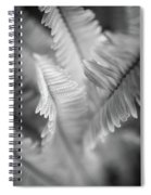 Spring Fern Macro In Black And White Spiral Notebook
