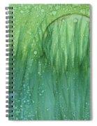 Spring Moon Spiral Notebook