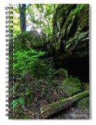 Starburst In The Woods Spiral Notebook