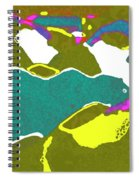 Steamboat Rock 09 Spiral Notebook