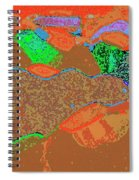 Steamboat Rock 12 Spiral Notebook