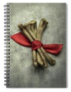 Still Life With Bones And Red Ribbon Spiral Notebook