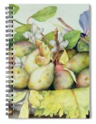 Still Life With Plums, Walnuts And Jasmine Spiral Notebook