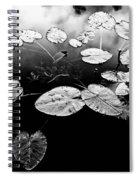 Stillness Spiral Notebook