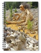 Stone Stacking Spiral Notebook