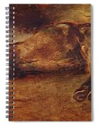 Study For Dead Horse Spiral Notebook