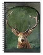 Stuffed And Mounted Spiral Notebook