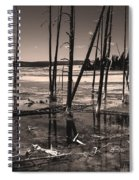 Sulfur Field Spiral Notebook