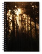 Sultry Morning Radiance Spiral Notebook