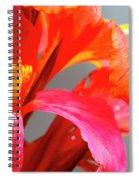 Summer Lilly Pink Spiral Notebook