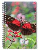 Summertime Feast 2 Spiral Notebook