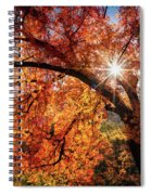 Sun Peaking Through The Autumn Colors  Spiral Notebook