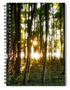 Sun Slivers Spiral Notebook