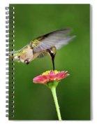 Sun Sweet Spiral Notebook