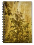 Sunbeams In The Foggy Forest #3 Spiral Notebook