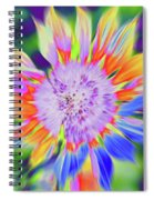Sunbreak Spiral Notebook