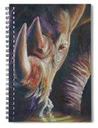 Sundowner Spiral Notebook