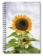 Sunflower Days Spiral Notebook