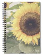 Sunflower Haze Spiral Notebook