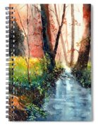 Sunlight Colorful Path Spiral Notebook
