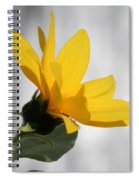 Sunny Yellow Tiny Sunflower Spiral Notebook