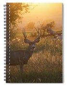Sunset Deer Spiral Notebook