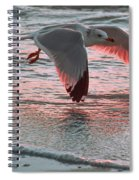 Sunset Glide Spiral Notebook