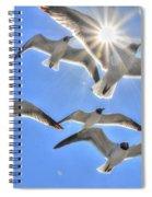 Sunshine And Seagulls Spiral Notebook