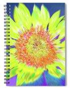 Sunspray Spiral Notebook