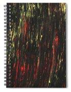 Superstitious Spiral Notebook
