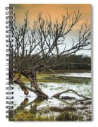 Swamp And Dead Tree Spiral Notebook