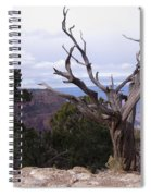 Swirly Tree Spiral Notebook