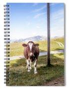 Swiss Cow Spiral Notebook