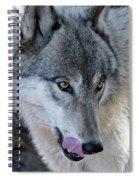 Tasty Wolf Spiral Notebook