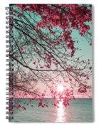 Teal And Fuchsia - Autumn Sunrise Reimagined Spiral Notebook