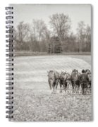 Team Of Six Horses Tilling The Fields Spiral Notebook