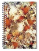 Terracotta Tumble Spiral Notebook
