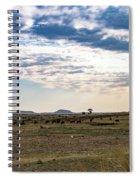 Thaba Nchu Landscape Spiral Notebook