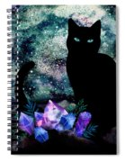 The Cat With Aquamarine Eyes And Celestial Crystals Spiral Notebook