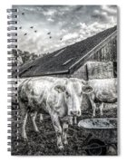 The Cows Came Home Black And White Spiral Notebook