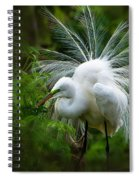 The Display Spiral Notebook
