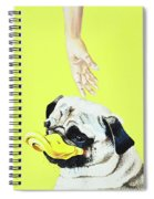 The Duck Spiral Notebook