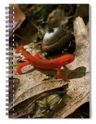 The Efts Progress Spiral Notebook