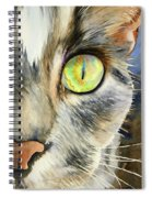 The Eye Of The Kitty Spiral Notebook