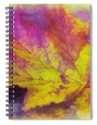 The Fall Spiral Notebook